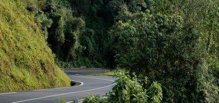 Getting to Nyungwe