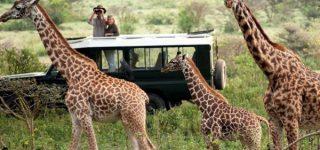 Travel tips to Rwanda