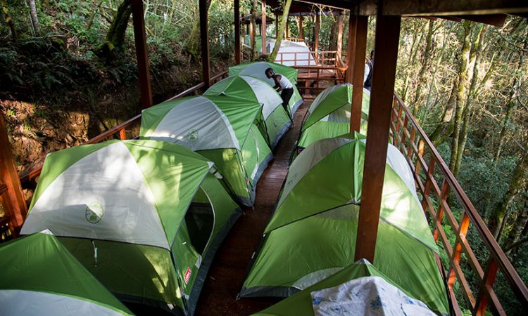 Camping in Nyungwe National Park