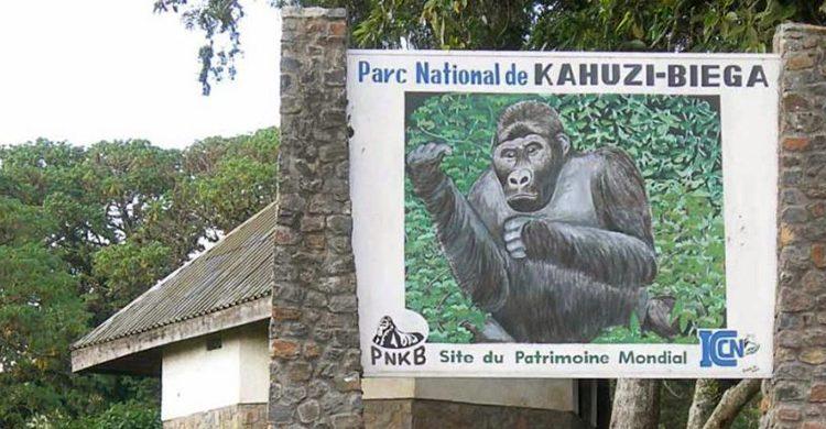 3 days Kahuzi Biega Safari Tour