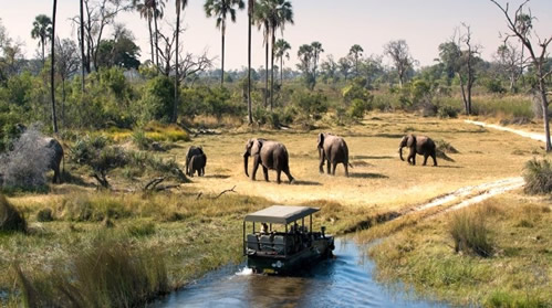 Top things To do during your visit to Uganda